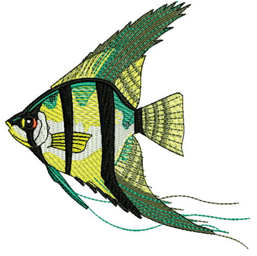 Embroidery Digitizing Service and Vector Artwork Services